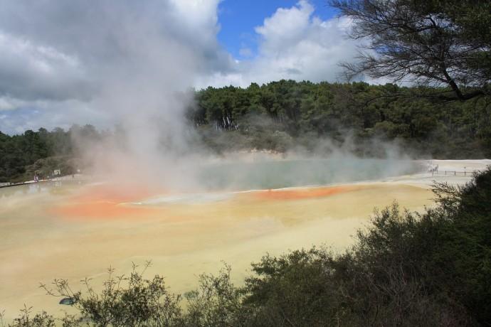 sulfur sensitivity