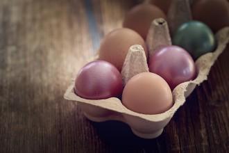 egg-1265784_1280