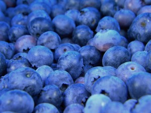blueberries-1245724_1280