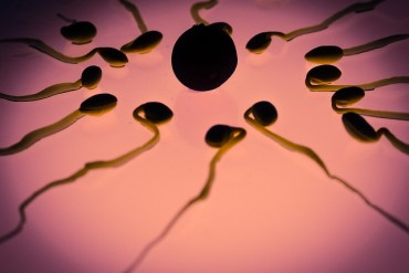 reduction sperm quality